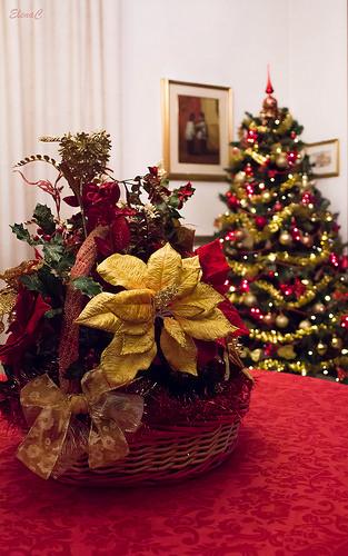 Il Natale in casa EleC